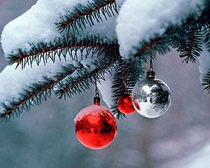 kerstborrel organiseren alphen aan den rijn